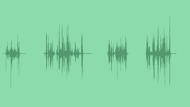 Autograph Sounds: Sound Effects