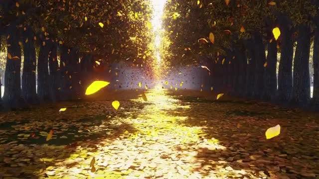 Autumn Park: Stock Motion Graphics