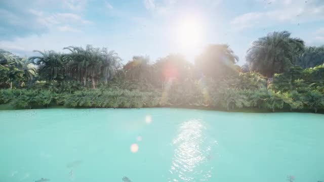 Lost Island: Stock Motion Graphics