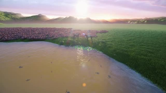 Horses By The Pond: Stock Motion Graphics