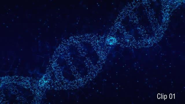 Plexus DNA 01: Stock Motion Graphics
