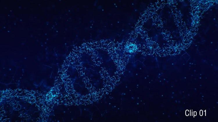 Plexus DNA 01: Motion Graphics
