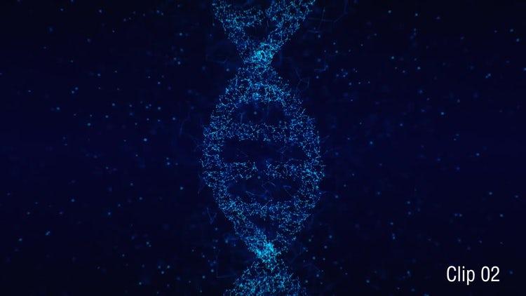 Plexus DNA 02: Motion Graphics