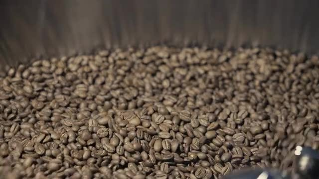 Coffee Beans: Stock Video