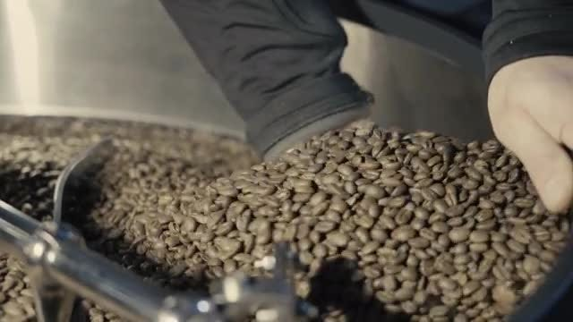 Touching Roasted Coffee Beans: Stock Video