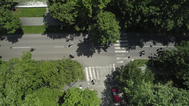 People Walking On Road: Stock Video