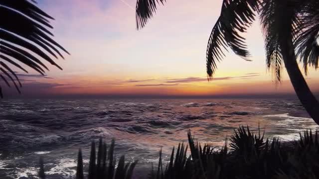 Seaside Dawn: Stock Motion Graphics