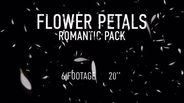 Flower Petals Pack: Stock Motion Graphics