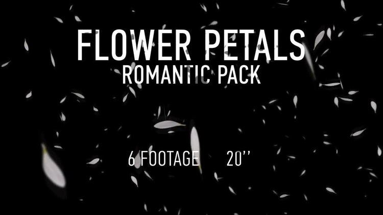 Flower Petals Pack: Motion Graphics