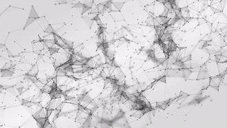 Plexus Background 01: Motion Graphics