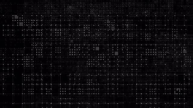 Digital Data Circuits: Stock Motion Graphics