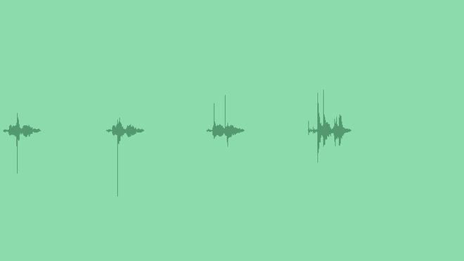 Broken Twig Fx: Sound Effects
