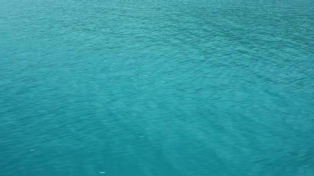 Surface Of The Water: Stock Video