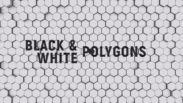 Black And White Polygons: Stock Motion Graphics