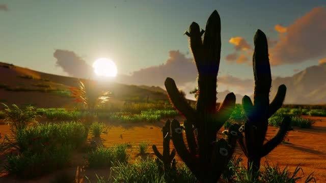 Sunrise In The Desert: Stock Motion Graphics