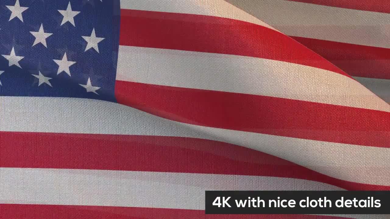 Shining Texture Detailed Flag MotionArray