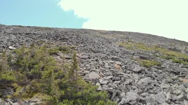 Rocky Mountain Face: Stock Video