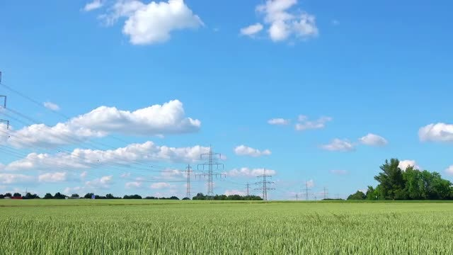 Electric Poles On A Field: Stock Video