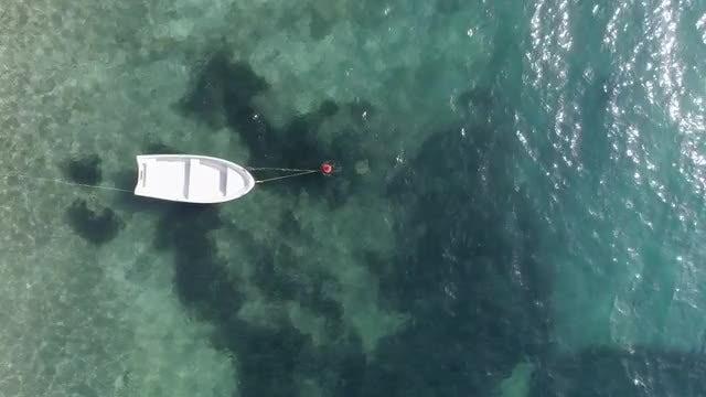 Boat At Sea: Stock Video