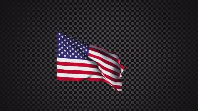 Flag USA: Stock Motion Graphics