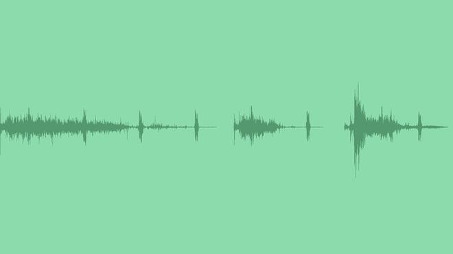 Toilet Flush - Long & Short: Sound Effects