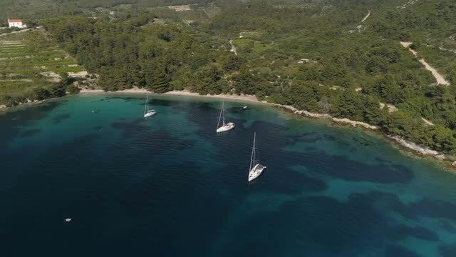 Sailboats Near The Coast: Stock Video