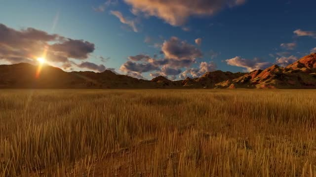 Sunset In The Field: Stock Motion Graphics