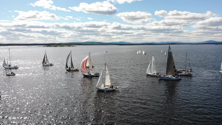 Sailboats Racing: Stock Video