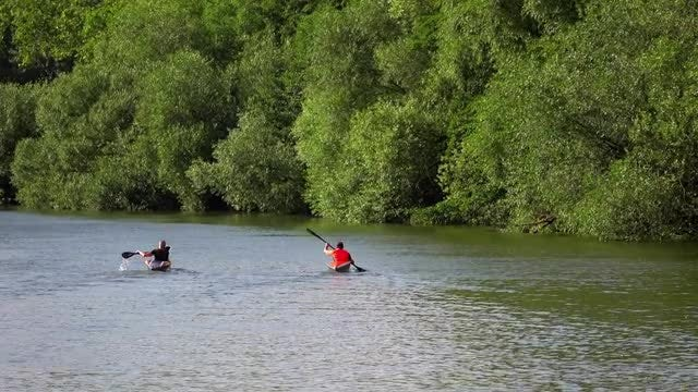 Friends Kayaking: Stock Video