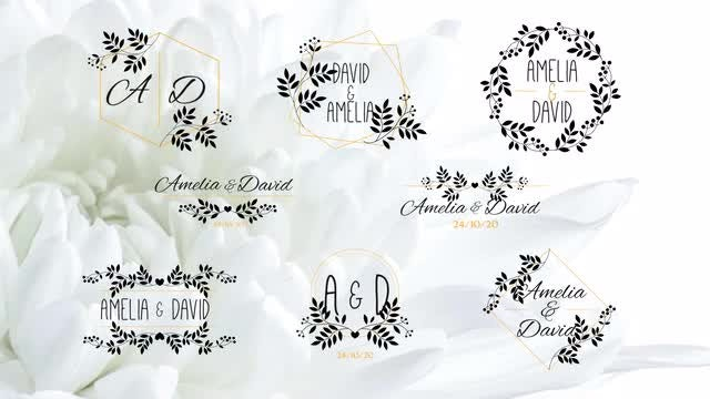 Elegant Flower Wedding Titles: After Effects Templates