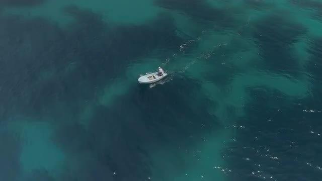 Fisherman In Motorboat: Stock Video