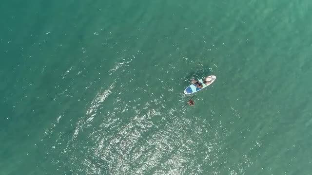 Swimming To A Paddle Board: Stock Video