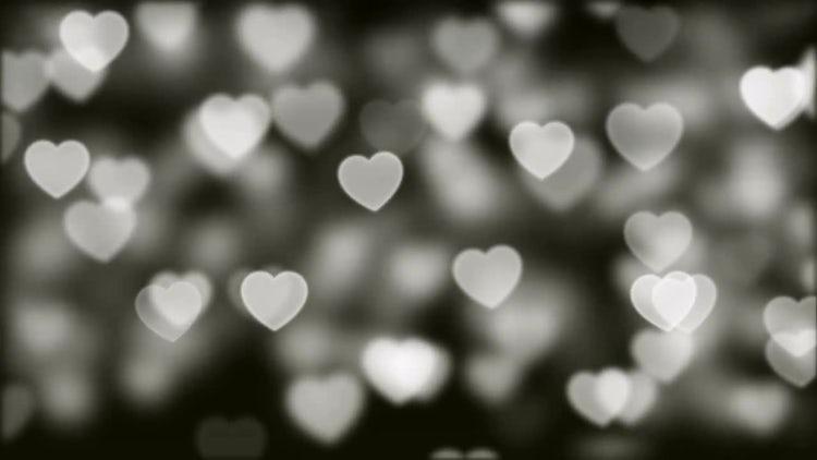 Love Bokeh Background Loop 03: Stock Motion Graphics
