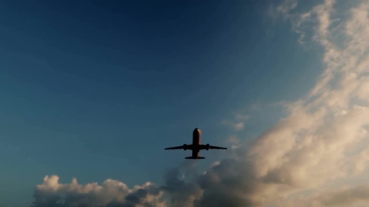 Airplane In The Sky: Stock Motion Graphics