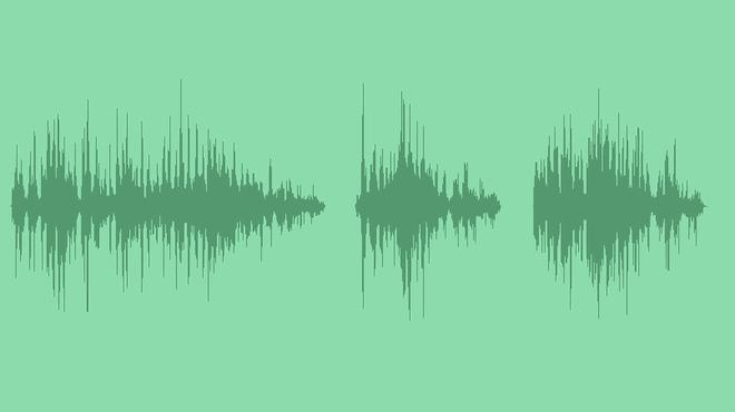 Swallow Bird: Sound Effects