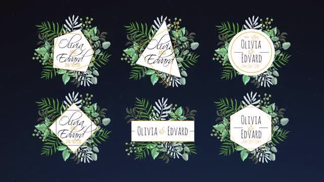 6 Tropical Wedding Labels: Motion Graphics Templates