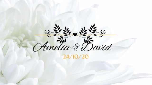 8 Flower Wedding Titles: Premiere Pro Templates