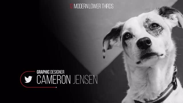 12 Modern Lower Thirds: After Effects Templates