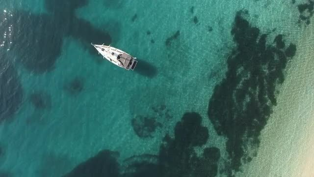 Boat On Tropical Sea: Stock Video