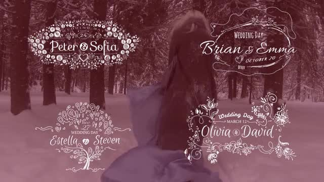 Romantic Collection Hand-drawn Titles: After Effects Templates