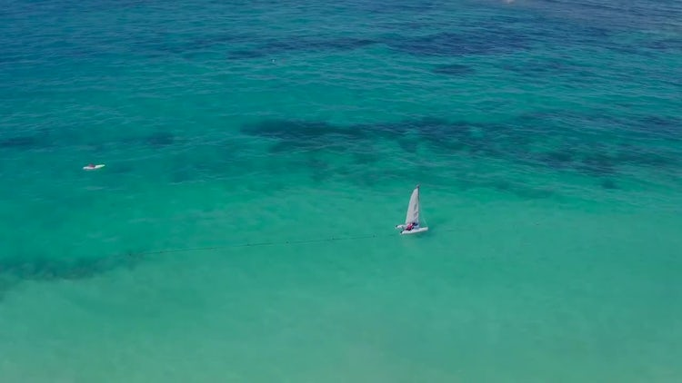 Beach Flight: Stock Video