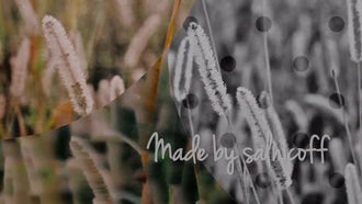 Elegant Circles: After Effects Templates
