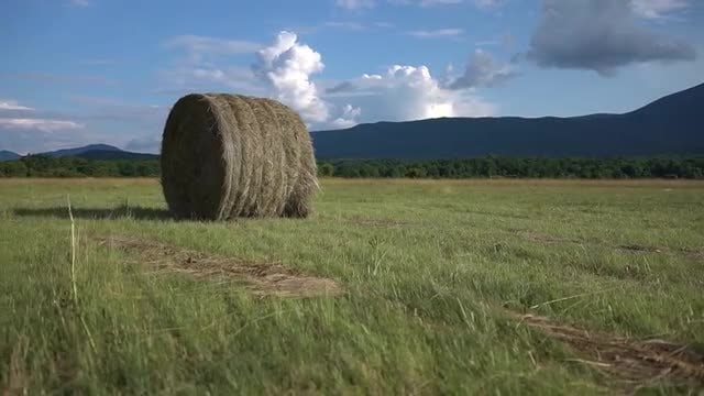 Bale Of Hay: Stock Video