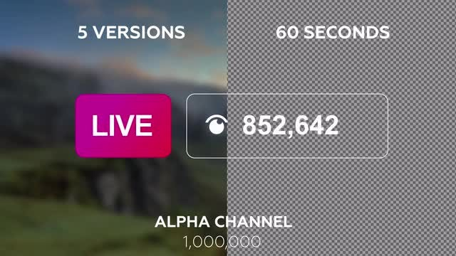 Live Counter Pack: Stock Motion Graphics