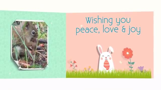 Easter Kit: After Effects Templates