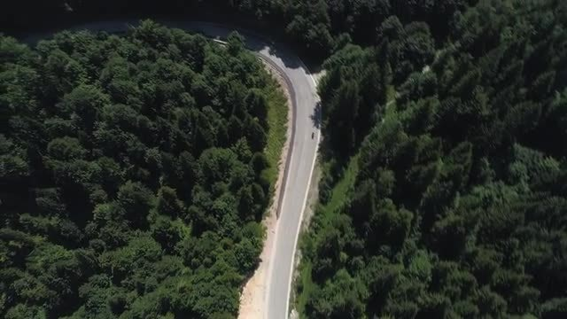 Motorcyclist On Forest Road: Stock Video