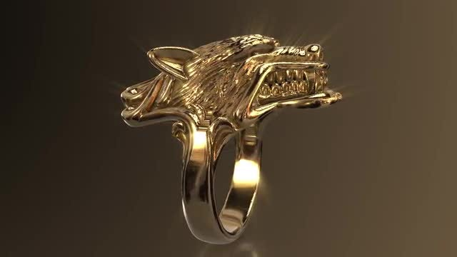 Lion Ring Loop: Stock Motion Graphics