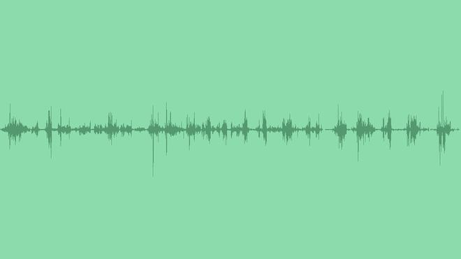 Birds In Forest: Sound Effects