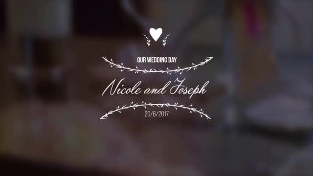 Wedding Titles V1: Premiere Pro Templates