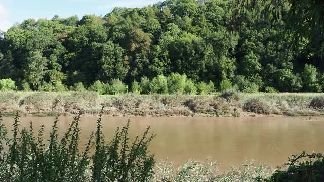 River Wye: Stock Video